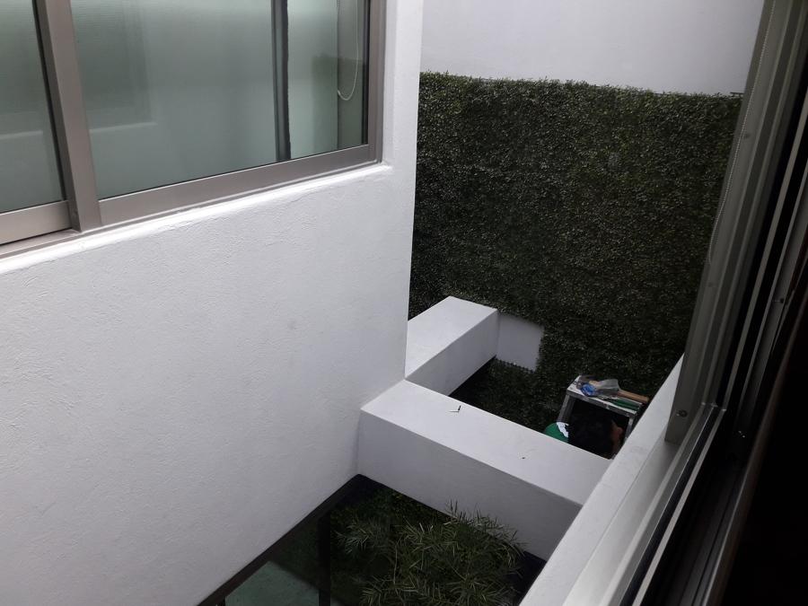 vista muro verde