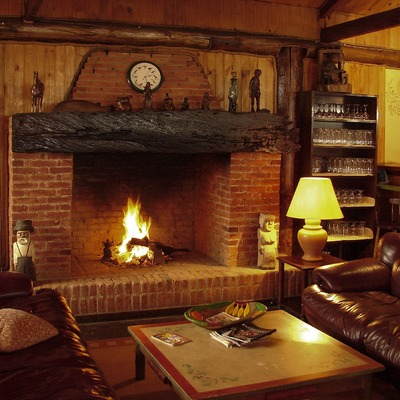 Todo lo que debes saber acerca de las chimeneas de leña