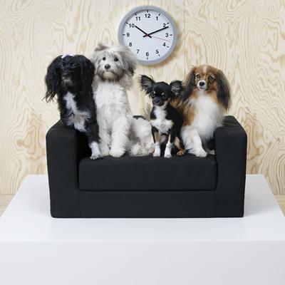 Una divertida colección de muebles para perros y gatos