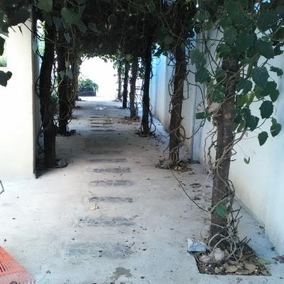 Tunel campestre de relajacion