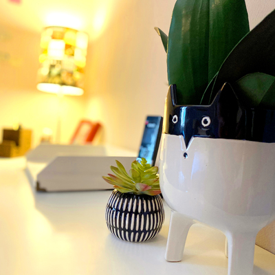 Home office / Oficina en casa - Tijuana