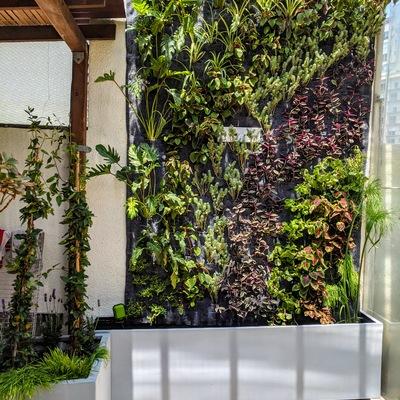 Jardín Vertical Roof Garden, Xoco, Ciudad de México
