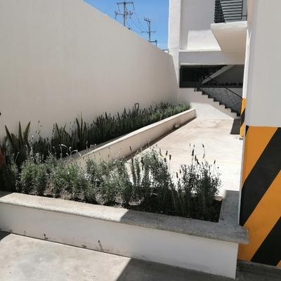 Habilitar jardineras en estacionamiento de torre residencial