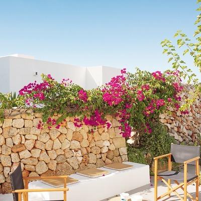 Terraza con muro de piedra