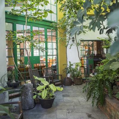 Casa Alrededor del Arbol