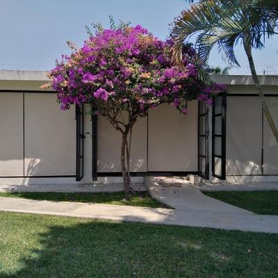 Instalación de persianas