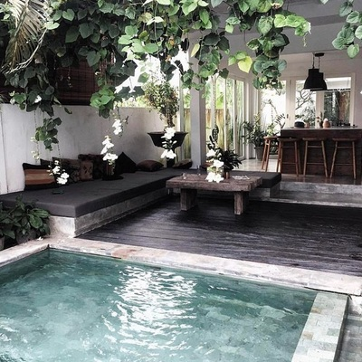 Terraza con alberca pequeña y plantas