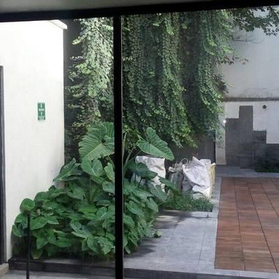 Remodelacion de Patio, Polanco-CMDX