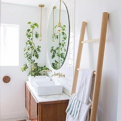 Baño decorado con planta en esquina