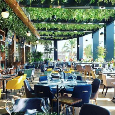 Restaurante PORFIRIO'S