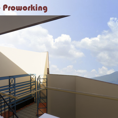 Proworking