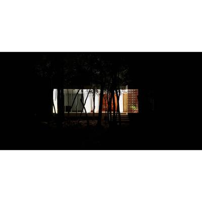 Casa en medio de la selva y varios interiores.
