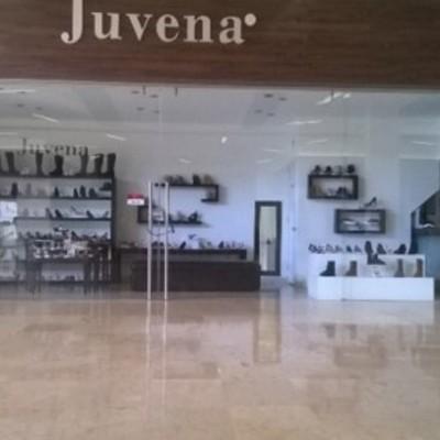 Proyecto Local Comercial Juvena.
