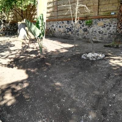 Proyecto Yareli Cuautla