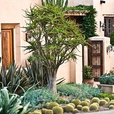 Crea un jardín resistente a las altas temperaturas
