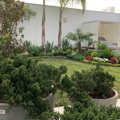 Paisajismo,  jardin y terraza