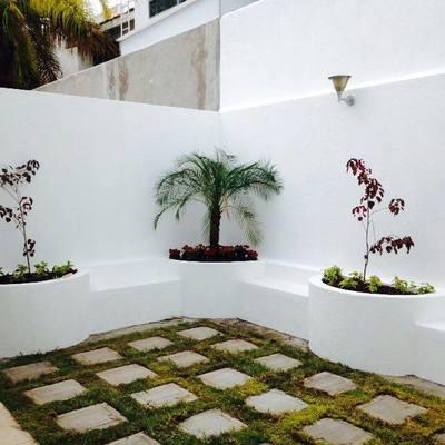 Proyecto de área de estar en jardín de interlomas