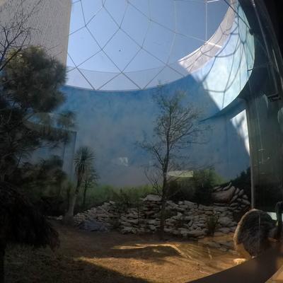Geodésica para aviario en el Museo de la Evolución Tehuacán