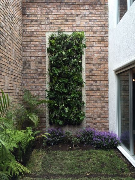 Foto en 2 hrs un jard n vertical totalmente terminado for Riego jardin vertical