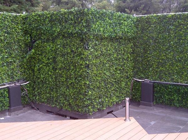 foto instalaci n de muro verde de rsi ingenieria 120253
