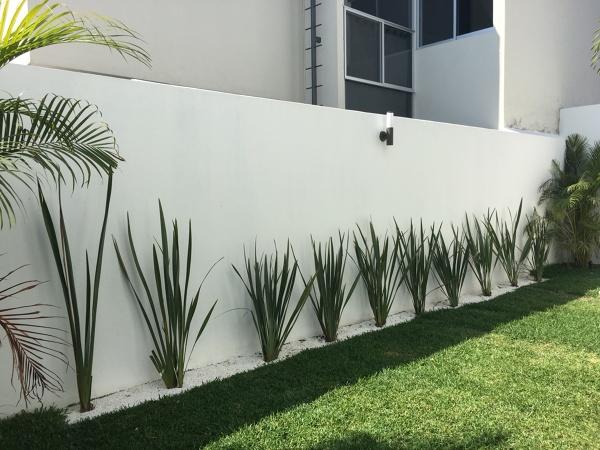 Foto Jardin Minimalista De Des Dev 274007 Habitissimo - Jardin-minimalista