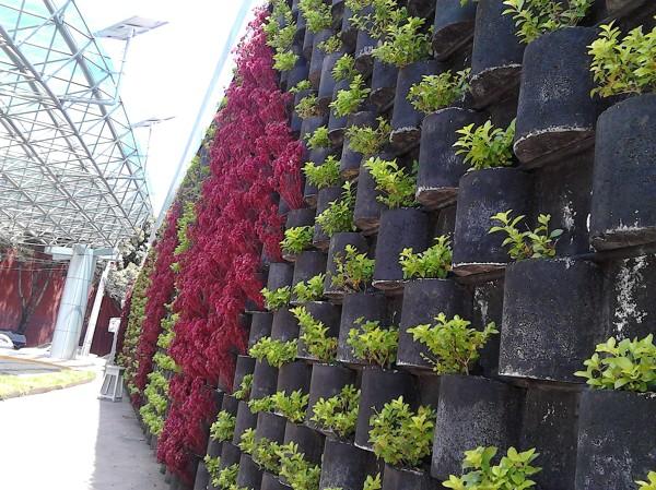 Foto jardin vertical floresta cfe de enfoque for Jardines verticales precios