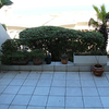 Terraza abandonada con piso de azulejos