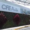 "ACADO DE JARDIN VERTICAL ""FLORESTA"" CFE D.F."