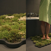 green-moss-carpet-rug-1024x723