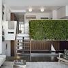 Interior-mezzanine-living-room-with-vertical-garden-vines-1024x796