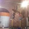 Remodelación Área Africana 13
