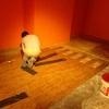 Remodelación Área Africana 35