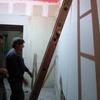 Remodelación Área Africana 39