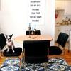 Comedor remodelado con DIY, sillas de terciopelo y tapete