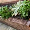 Small-Garden-Idea.-Green-16-1024x682