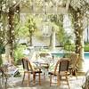 Terraza con plantas, pasto y alberca