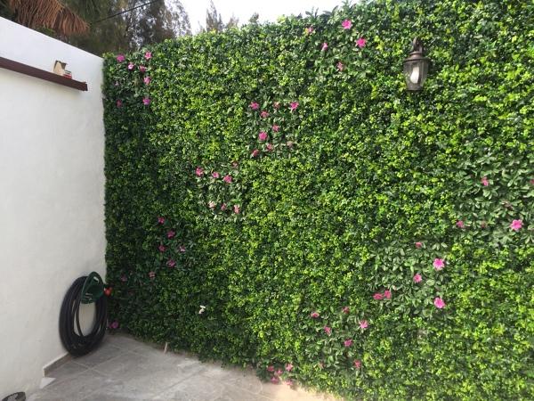 De cu ntos m2 se puede hacer un muro verde habitissimo for Materiales para un muro verde