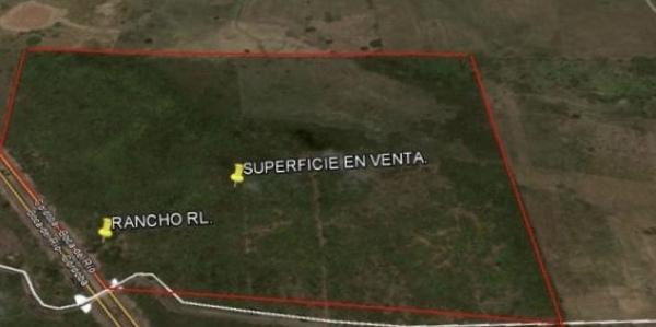 ¿Cuánto cuesta bardear un terreno de 20 hectáreas?