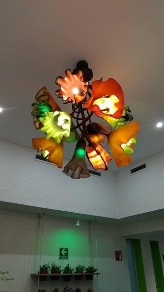 ¿Cuánto cuesta esta lampara?