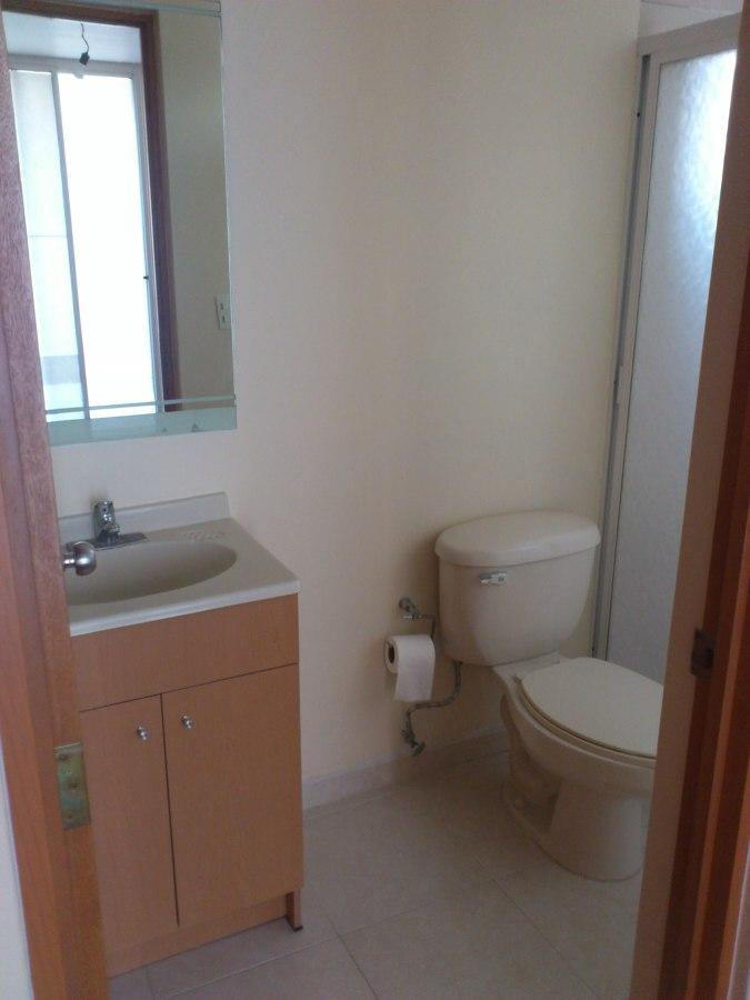 Decoraci n de interiores departamento miguel hidalgo for Alfombra 3x4