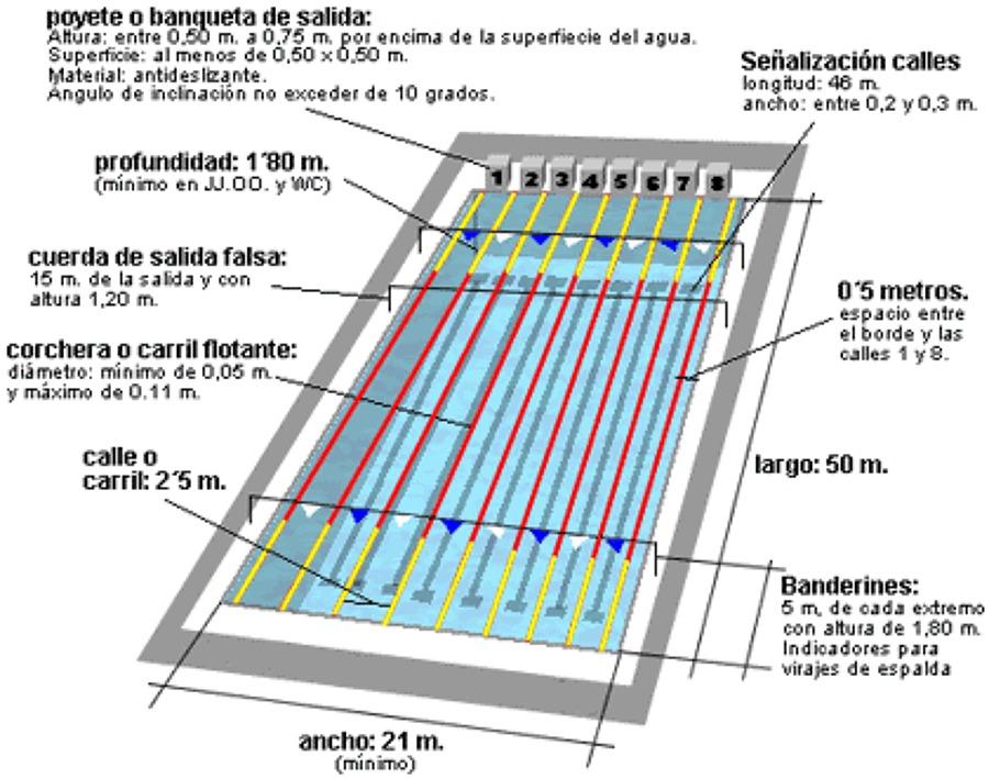 Construccion de alberca las flores p tzcuaro michoac n for Partes de una piscina
