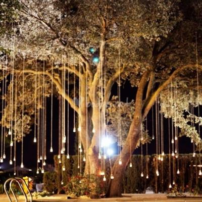 Remodelacion para restaurante cafeteria ramon serrano for Iluminacion arboles jardin