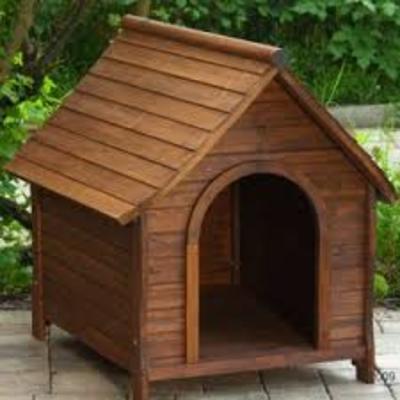 Casa para perro real del sol saltillo coahuila habitissimo - Casas para perros pequenos ...