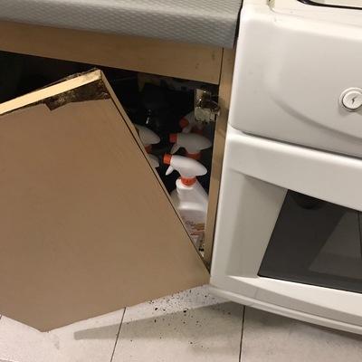 Cambiar puertas abajo fregadero cocina integral h roes - Cambiar puertas de cocina ...