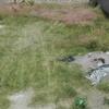 Cortar hierba