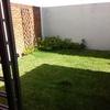 Cortar el pasto del patio trasero