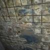 Reparar techos con humedad