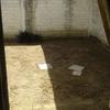 Construcción de alberca de 2 x 3 mts.