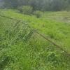 Limpiar periferia de terreno para poder colocar malla ciclonica