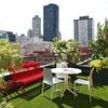 Quitar jardín y poner pasto sintético y decorar